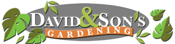 David and Son Landscaping, Tree Trimming, Yard Maintenance, and More!